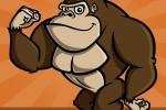 gorilla-002